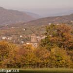 foliage-117-tombeto