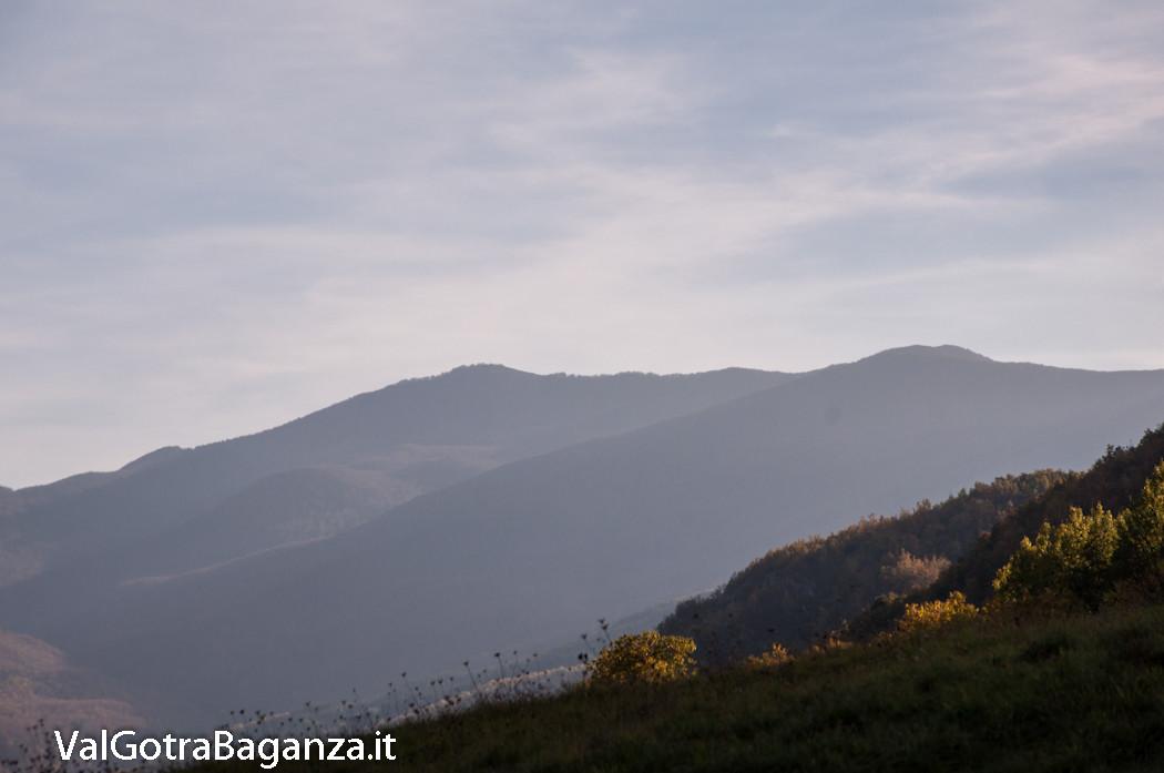 foliage-123-monte-gottero