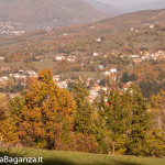 foliage-125-albareto