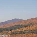 foliage-132-monte-molinatico