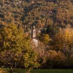foliage-145-tombeto
