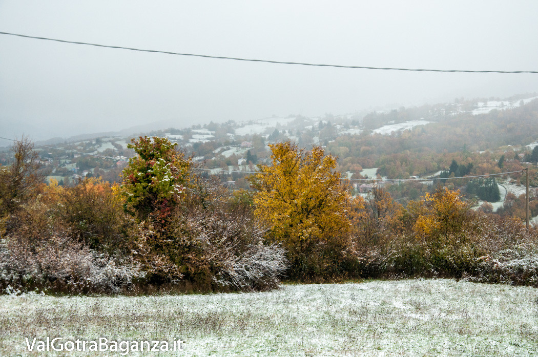 prima-neve-autunno-albareto-101