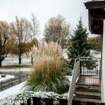 prima-neve-autunno-albareto-105
