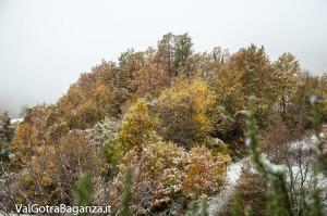 prima-neve-autunno-albareto-107