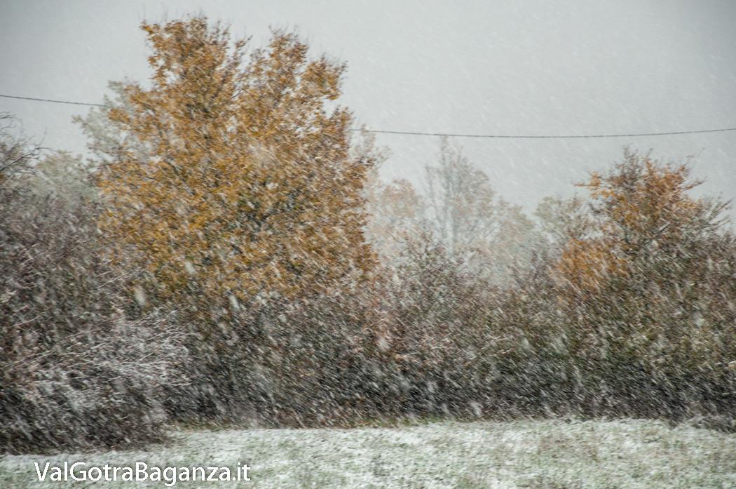 prima-neve-autunno-albareto-114