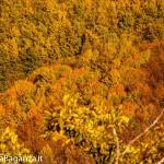 salti-del-diavolo-132-autunno-foliage