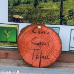 winter-trail-tarsogno-397