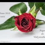 auguri-buon-anno-2018