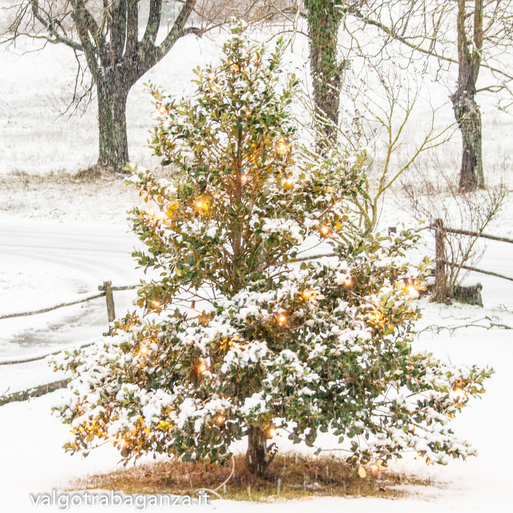 neve-101-inverno