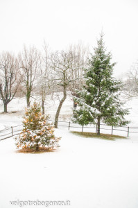neve-104-inverno