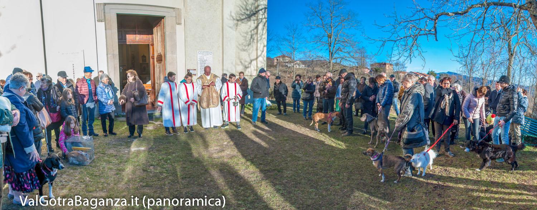 santantonio-abate-170-porcigatone