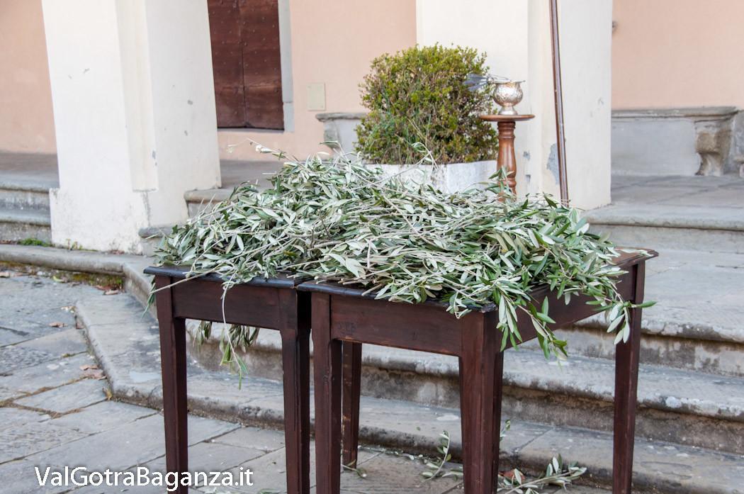 benedizione-palme-ulivi-114-domenica-palme
