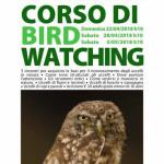 corso-di-birdwatching