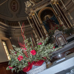 domenica-delle-palme-125-chiesa-albareto