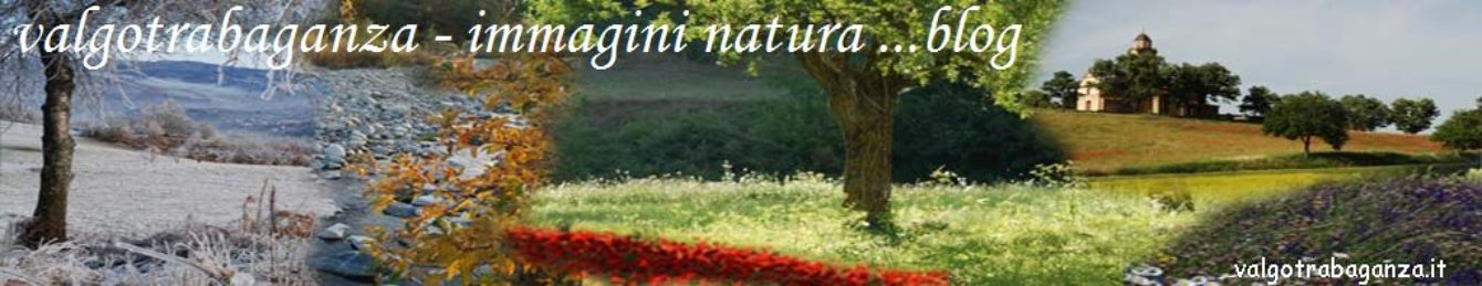 VALGOTRABAGANZA – immagini natura e parole … blog